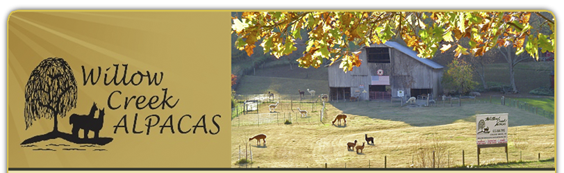 Willow Creek Alpacas